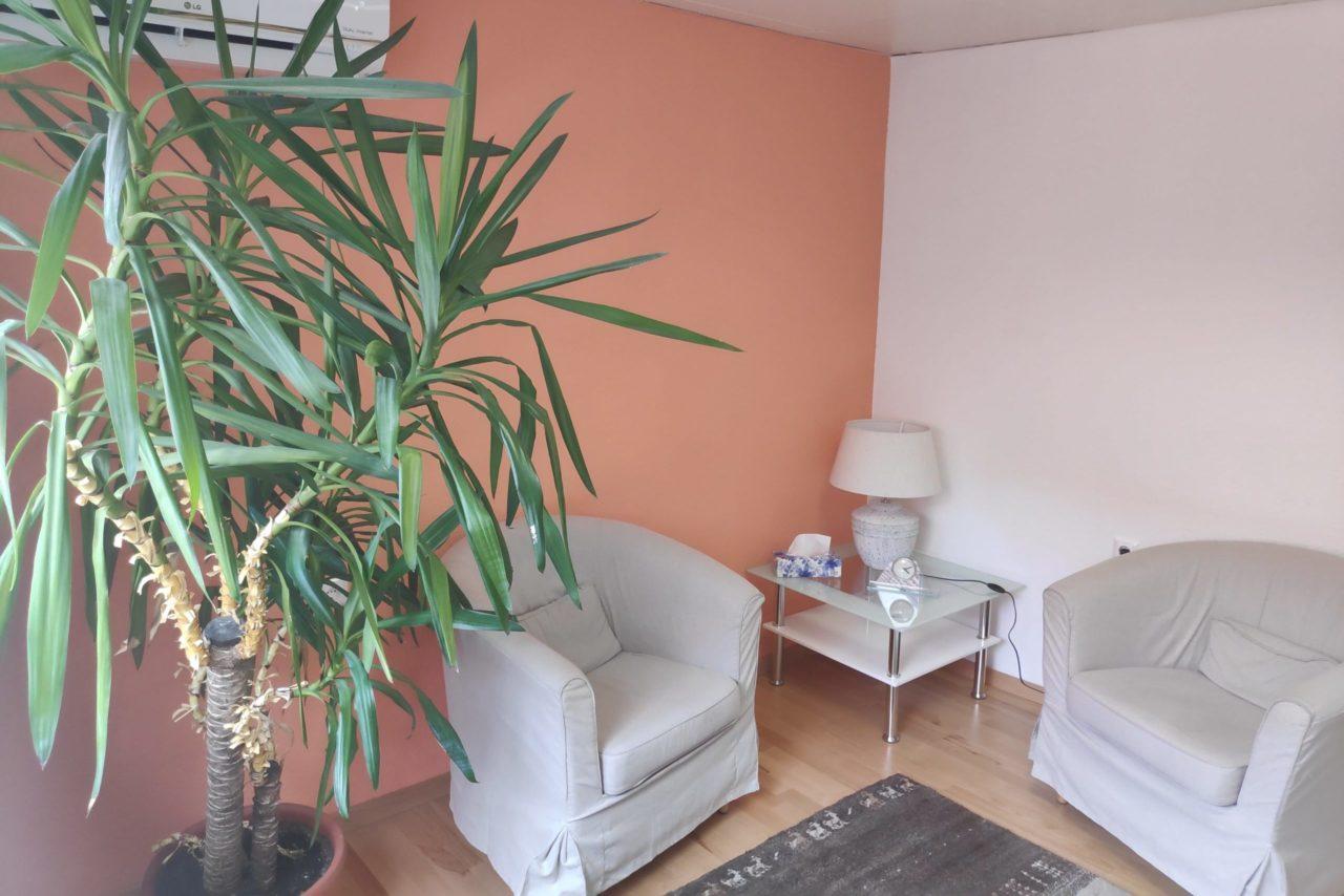 Auf dem Bild sind zwei bequeme Sessel mit einem Beistelltisch, Pflanze und Lampe in der Praxis in Wiener Neustadt zu sehen.